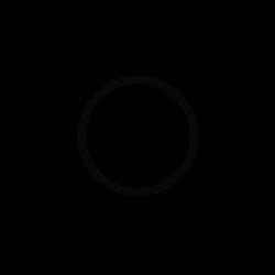 AMGA SPI logo
