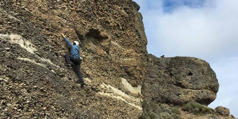 climbing_tortuga